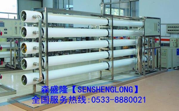低磷反渗透阻垢剂SS810U价格